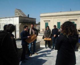 Zollino: dieci scatti per parlare di Grecìa Salentina