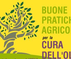 Zollino informa sulle buone pratiche per la cura dell'olivo