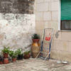 Futuri Possibili: il paesaggio della Grecìa Salentina