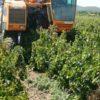 Respinta la liberalizzazione del fascicolo aziendale per le imprese agricole