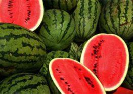 Caldo: crac angurie e meloni distrutti per prezzi bassi