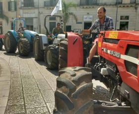 Marcia dei trattori blocca il traffico: protesta il Comitato Olivicoltori Salentini