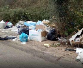 """Lecce, aumentano le minidiscariche. D'Agata: """"Installare fototrappole per sanzionare chi abbandona rifiuti"""""""