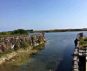 Lecce è il suo mare: al Sic di Acquatina il Comune incontra l'Università del Salento