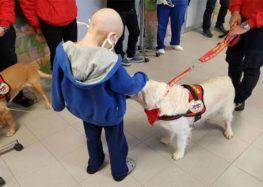 """""""Cani Eroi"""" fanno una sorpresa ai piccoli pazienti dell'Ospedale di Lecce"""